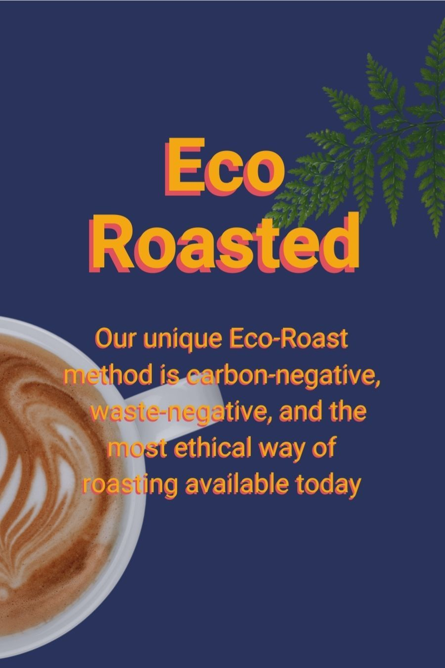 Eco Roast coffee process